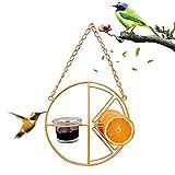 Die besten 1 Hummingbird Feeders - Vogel Feeder 2- In- 1 Hummingbird Hängen Obst Bewertungen