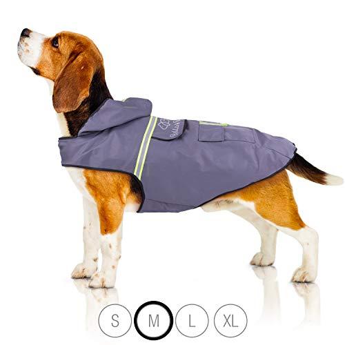 Bella & Balu Hunderegenmantel – Wasserdichter Hundemantel mit Kapuze und Reflektoren für trockene, sichere Gassigänge, den Hundespielplatz und den Urlaub mit Hund (M | Grau)
