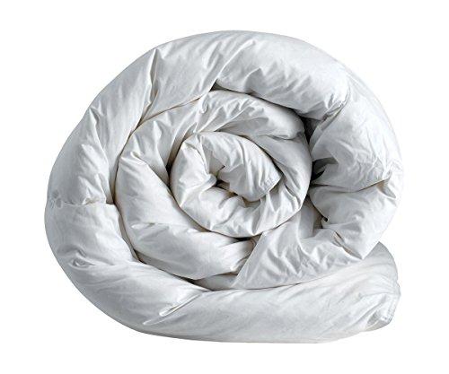 Corredocasa ® - Piumino – Interno Sacco Bianco Invernale Letto da 1 Piazza e Mezza Cm 200x200