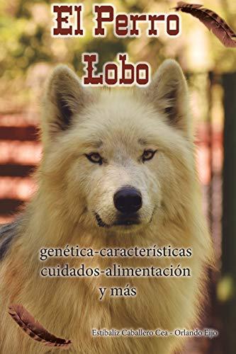 El Perro Lobo: genética - características - cuidados - alimentación y más