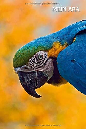 Mein Ara: Gelbbrustara, Ara ararauna. Tagebuch, Planer, Journal, Notizbuch für Papageienfreunde, Tierfreunde, Vogelkundler. Format A5, 120 Seiten, dezent grau liniert.