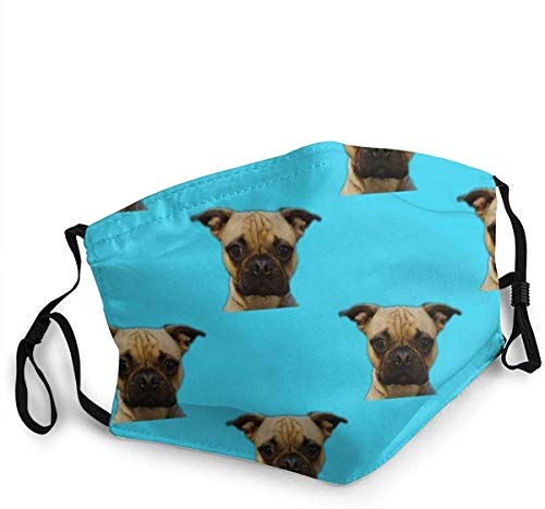 Bosco Frug Black Face scarfs Washable Reusable Safety scarfs Protection from Dust Pollen Pet Dander Other Airborne