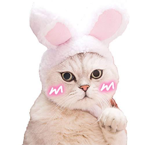 Cute Cat Rabbit Hat, Premium Plush …