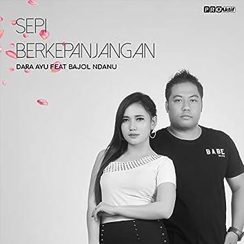 Sepi Berkepanjangan (feat. Bajol Ndanu)