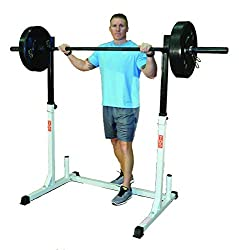 commercial 600 lbs TDS rack for squats and bench presses. The load capacity can be used for squats, bench presses, tilted bench presses, etc. tds squat rack