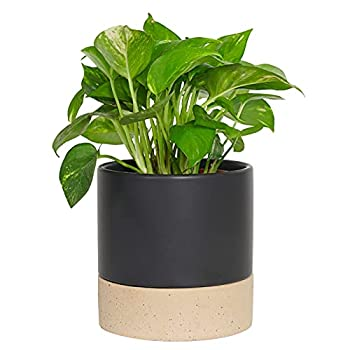 Fengson 6 inch Ceramic Planter Pot with Drainage Hole and Saucer/tary Indoor Cylinder Round Planter Pot for Succulents Flowers and Cactus,Decorate Home Office & Outdoor Black