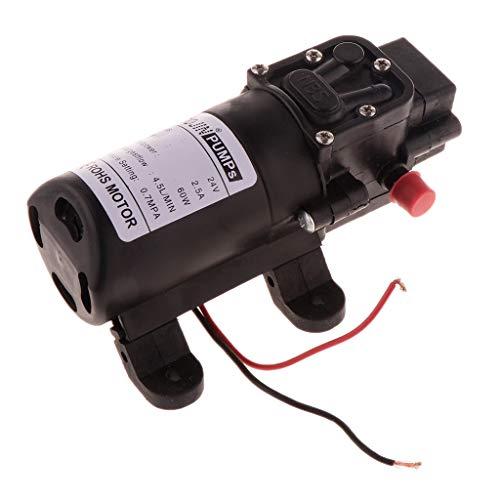 4.0L/min 24V Hochdruck Elektrische Membranpumpe Wasserpumpe Mikromembran Pumpe - 24V Doppelschlauch