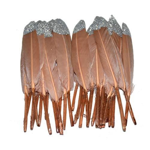 Adamai - Set di 100 accessori decorativi per abbigliamento, placcati in argento con piume d'oca, 15-20 cm brown+silver
