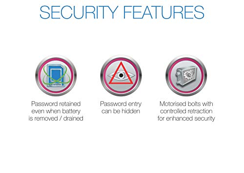 Godrej Security Solutions E-Laptop Electronic Safe (Grey)