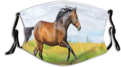 Cubierta de cara con diseño de caballo para correr gallop en flor prado de la libertad rural animal imagen cubierta lavable reutilizable, decoración de la cara de ciclismo