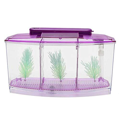 TIREOW Mini Abnehmbar Kunststoff Aquarium Fischtank Filtersystem Tropische Aquarien Teiler Wasser Filtern Mit Sechs LED Deckenleuchten Lichter für Kleine Fische (Lila)