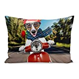 Aikul Throw Pillow Covers Pet Scooter Dog Jack Puppies Russel Funny Crazy Pillow Case Cushion Cover Lumbar Pillowcase Decoration for Couch Sofa Bed Car,20 x 26 inchs