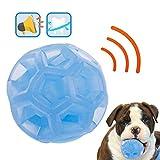 Rocky & Chao Hundeball Quietschspielzeug Durable Pet Chew Toys Bälle Bouncy Rubber Hundespielzeug mit Quietschgeräusch für Haustiere Training Spielen Laufen, S (Blau)