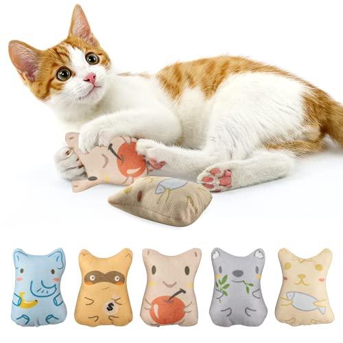 5 Stück Katzenspielzeug Set, Katzenspielzeug Set aus Katzenkissen, Baldrian Kissen Spielzeug mit Katzenminze, Katzenspielzeug Beschäftigung, Süße Katzenminze Spielzeug zum Kratzen, Spielen und Kauen