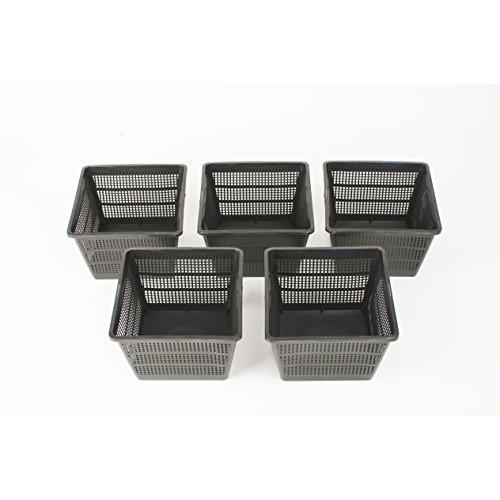 Inter Flower - 5er Set L Pflanzkörbe Wasserpflanzen 18x18x12cm/für Gartenteich - gut geeignet für Teichplfanzen wie Seerosen/Kunststoff/Teichpflanzen Korb, Gartenteich Wasserpflanzen