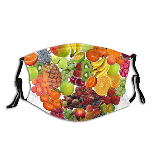 Face Guard Mouth Guard Heart Fruit Isolated Healthy Eat Fruits Vitamins Balaclava Mouth Bandanas Neck Gaiter with 2 Filters