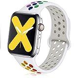 VIKATech Compatible con Apple Watch Correa 44mm 42mm, Correa Deportiva Reemplazo clásico de Silicona Suave Transpirable para iWatch Series 6/5/4/3/2/1, S/M, Pride