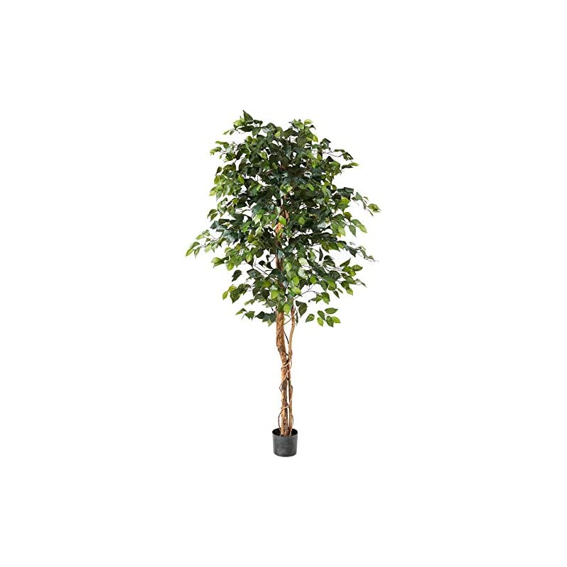 silk flower arrangements nearly natural 6ft. ficus artificial trees, 72in, green