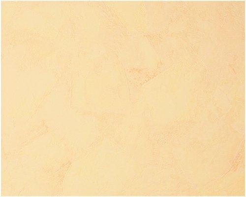 A.S. Création Vliestapete Tapete in mediterraner Putzstruktur 10,05 m x 0,53 m orange Made in Germany 169020 1690-20