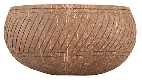 Cocovibes Jumbo Coconut Bowl - Ciotola in cocco con Buddha, per cereali, sostenibile, vegana