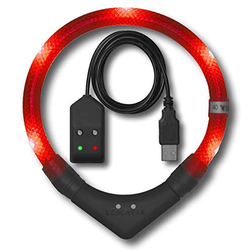 LEUCHTIE® Leuchthalsband Plus Easy Charge rot Größe 60 I LED Halsband für Hunde I USB aufladbar I wasserdicht I extrem hell