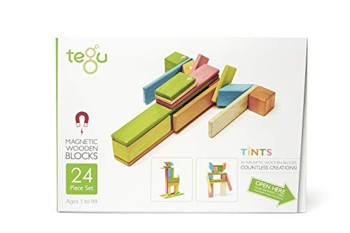 24 Piece Tegu Magnetic Wooden Block Set, Tints