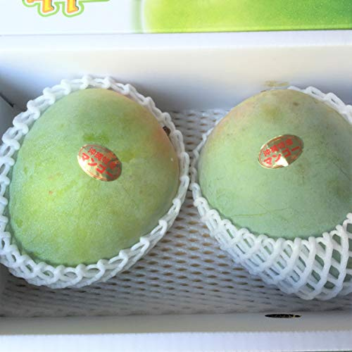 沖縄県産キーツマンゴー(優品)1kg(2~3個)