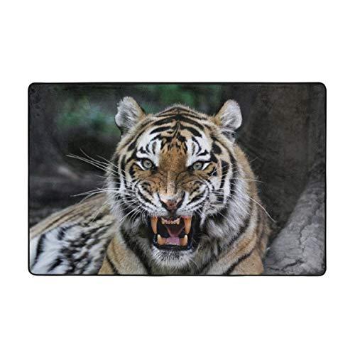 kThrones Alfombra de baño Alfombra,Cara de Tigre Africano con rugiente Wildlife Safari Savannah Animal Nature Zoo Photo Print Alfombra de baño 45cmx75cm
