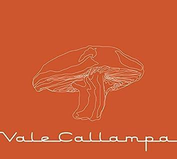 Vale Callampa