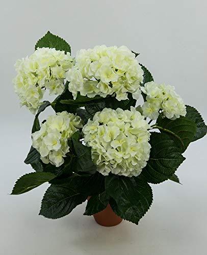 Hortensienbusch Deluxe 42cm weiß-Creme im Tontopf LM Kunstpflanzen Kunstblumen künstliche Pflanzen Blumen Hortensie