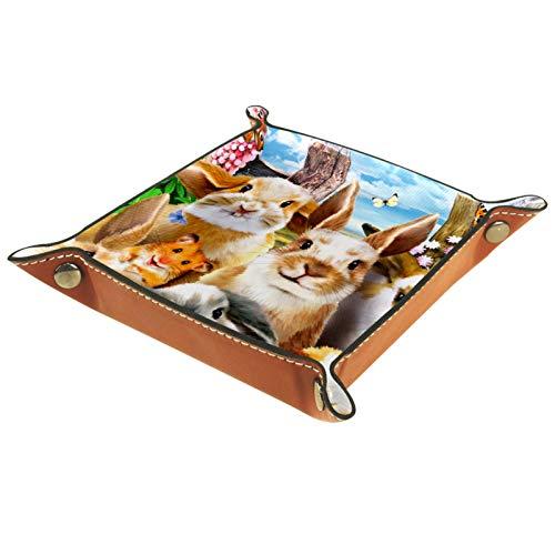 YATELI Caja de Almacenamiento pequeña, Bandeja de Valet para Hombre,Pensamiento de ratón Conejo,Organizador de Cuero para Llaves de Caja de Monedas