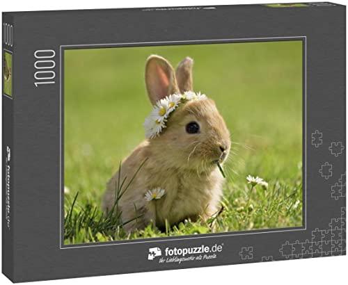 Puzzle 1000 Teile Hase im Gras, Margeritenkrone, Frühling und Ostern - Klassische Puzzle mit edler Motiv-Schachtel, Fotopuzzle-Kollektion \'Tiere\'