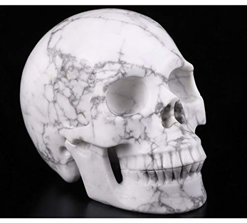 Skullis 5.0' Howlite Crystal Skull, Hand Carved Gemstone Fine Art Sculpture, Reiki Healing Stone Statue.