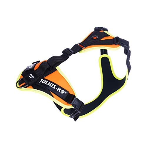 Julius-K9 19MTR-for-M-AMZ Mantrailing & Outdoor Hundegeschirr, Größe: M, UV orange mit neon Rand, UV orange mit neon Rand, 300 g