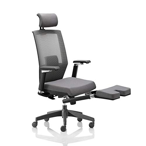 AMILZ Ergonomic Office Chair, Adjustable Chair with Lumbar Support, High Back Breathable Mesh, Thick Cushion Seat, Adjustable Headrest, Armrests and Seat, Footrest with Soft Cushion