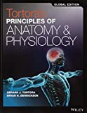 Tortora's Principles of Anatomy and Physiology Set: Global Edition