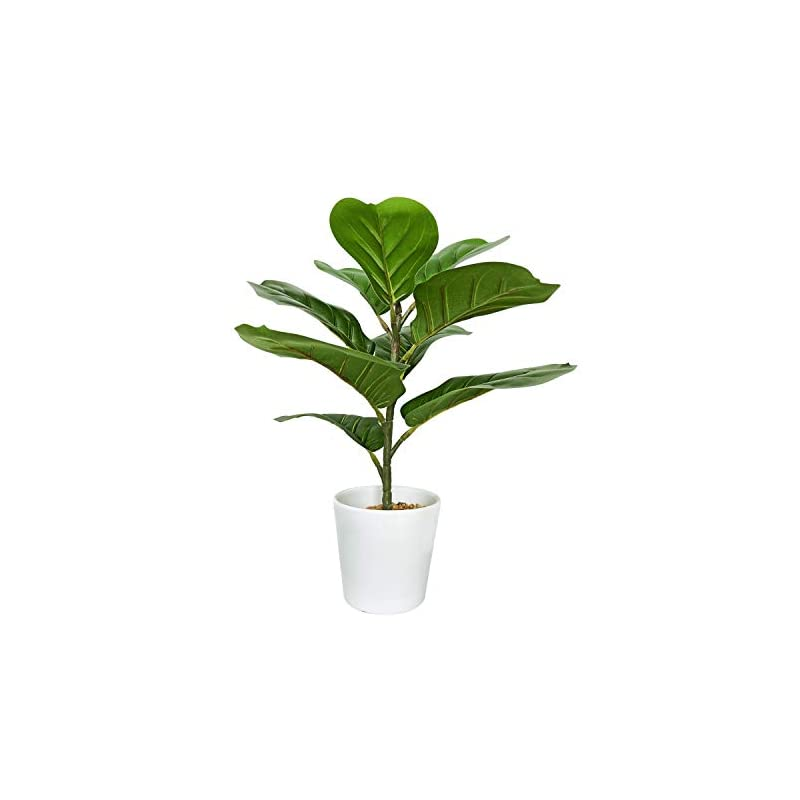 """silk flower arrangements besamenature artificial fiddle leaf fig tree/faux ficus lyrata for home office decoration, 16"""" tall, ships in white ceramic planter"""
