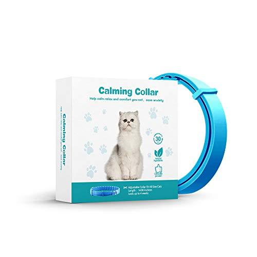 Cat Relaxants