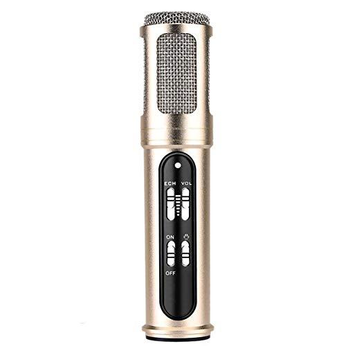 Lebeaut Micrófono con Cable Profesional for conferencias Bloggers vlogueros Canto Youtube en Vivo de vídeo para Podcast Grabación Entrevista