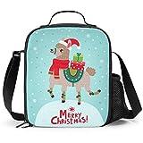 Delerain - Fiambrera de Navidad con asa y correa para el hombro, bolsa de comida para niños, niñas, niños, preescolar, oficina, picnic