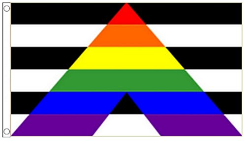 1000 Flags Limited Straight Ally LGBT & Straight Alliance Flag 5'x3' (150cm x 90cm) - Woven Polyester Flag 5'x3' (150cm x 90cm) - Woven Polyester