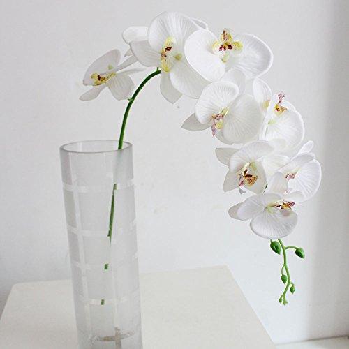 DDG EDMMS 'Deutsche Dampfschifffahrts-Gesellschaft edmms Künstliche Phalaenopsis-9Head Fake Seide Blumen Simulation Orchidee Blume für Home Hochzeit Dekoration Weiß