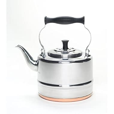 BonJour Tea Stainless Steel and Copper-Base Gooseneck Teapot/Teakettle, 2-Quart