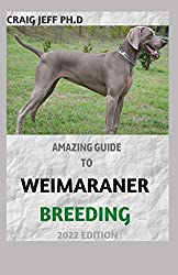 AMAZING GUIDE TO WEIMARANER BREEDING 2022 EDITION: Complete Care, Feeding, Training For Your Puppy