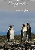 Mit Pinguinen durch das Jahr (Wandkalender 2022 DIN A3 hoch): Dieser Pinguin Kalender begleitet Sie durch das Jahr und bietet genuegend Platz fuer Terminnotizen (Planer, 14 Seiten )