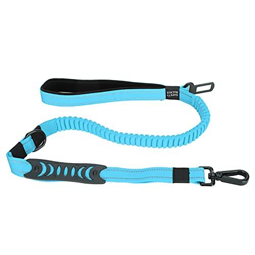 FECAMOS Correa para pasear Perros, Tiras eflectivas Correa para Mascotas Resistente al Desgaste para Entrenar o pasear al Perro(Blue)