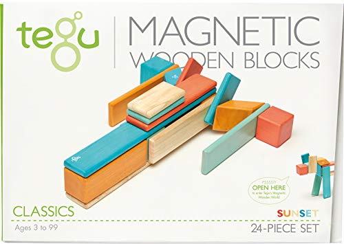24-Piece Tegu Magnetic Wooden Block Set