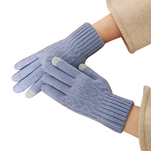 ZQHTY Winterhandschuhe Damen Handschuhe Fahrrad Touchscreen Warme Thermohandschuhe Rutschfester Griff Warm Gefüttert Winddicht,Helles Lila