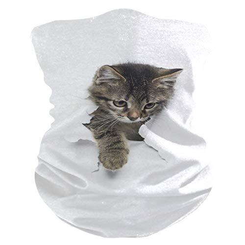 LZXO Bandana Stirnband süß Tier Katze Papier nahtlos Gesicht Schal Outdoor Kopfbedeckung Sturmhaube Halstuch Wärmer für Staub Wind Sonnenschutz