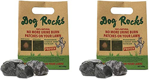 Dog Rocks - Prevent Grass Burn Spots by Urine 600g - Save Your Lawn from Yellow Marks - 2 Packs